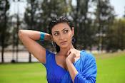 Neelam Upadhyay pics in Blue saree-thumbnail-4