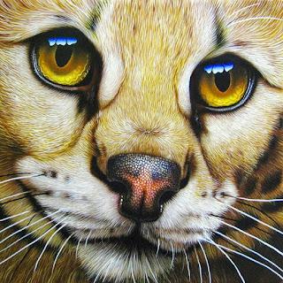 Cuadros Rostros Animales Pintura