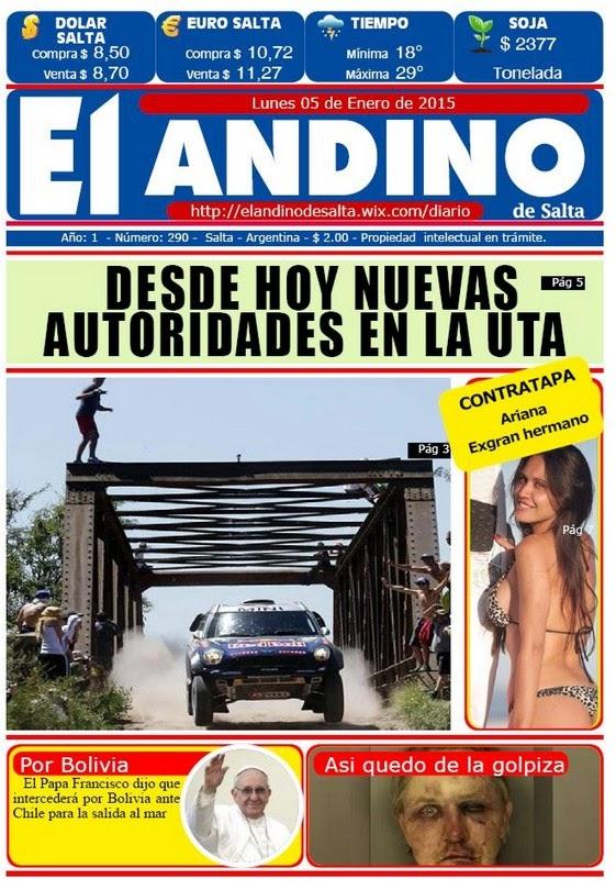 Ari Fiorentino en diario El Andino