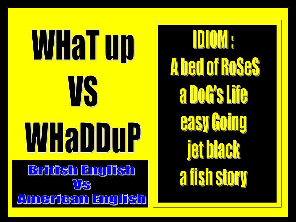 Belajar bahasa Inggris dan IDIOM
