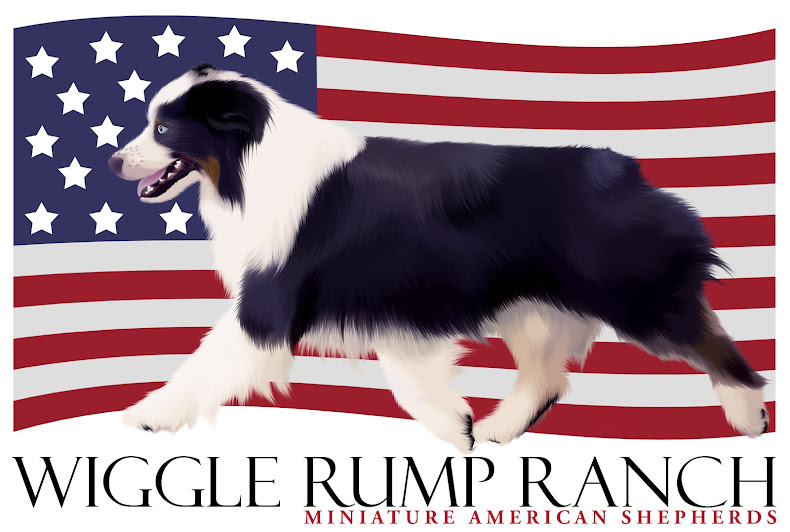 """Wiggle Rump Ranch"""