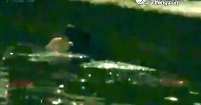 Sirius Jijik Dalam Longkang Penuh Sampah Pun Jadi Buat Hubungan Kelamin VIDEO