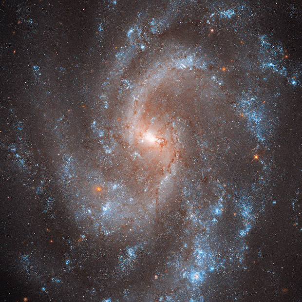 Beautiful Spiral Galaxy NGC 5584, key to Universe's expansion