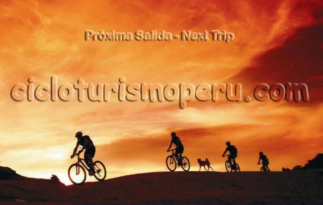 NEXT TRIPS - CTP - PROXIMAS SALIDAS