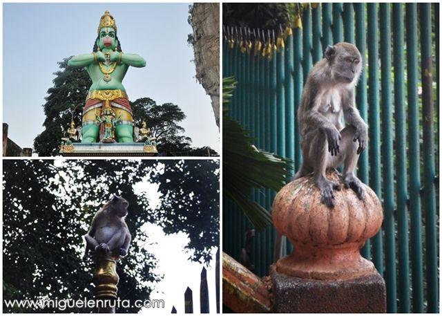 Macacos-Cuevas-Batu-monos