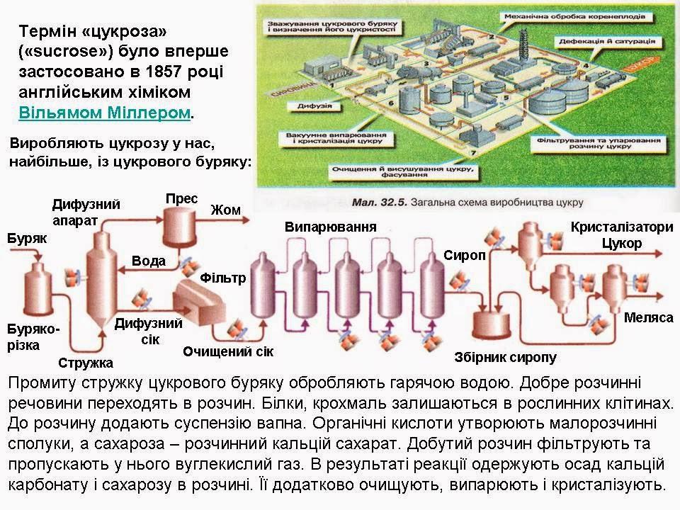 Застосування вуглеводів загальна схема виробництва цукру