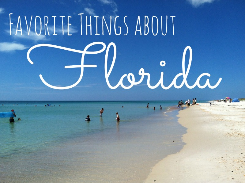 Quotes About Florida Classy State Florida The Sunshine Quote Quotes