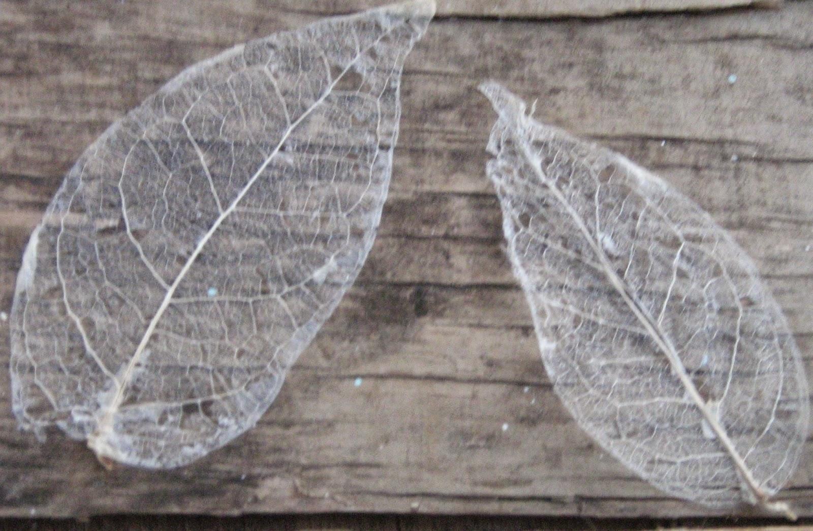 How to make skeleton leaves 2