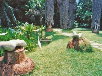 El jard n bot nico de caracas en for Jardin botanico tarifas