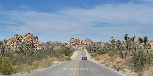Rugged Landscape at Joshua Tree National Park