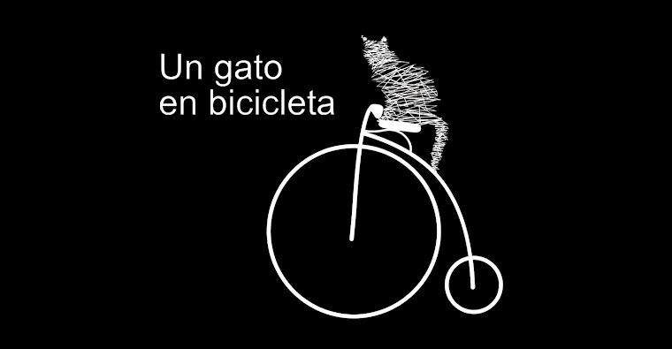 Un Gato En Bicicleta, Librería especializada en Ar