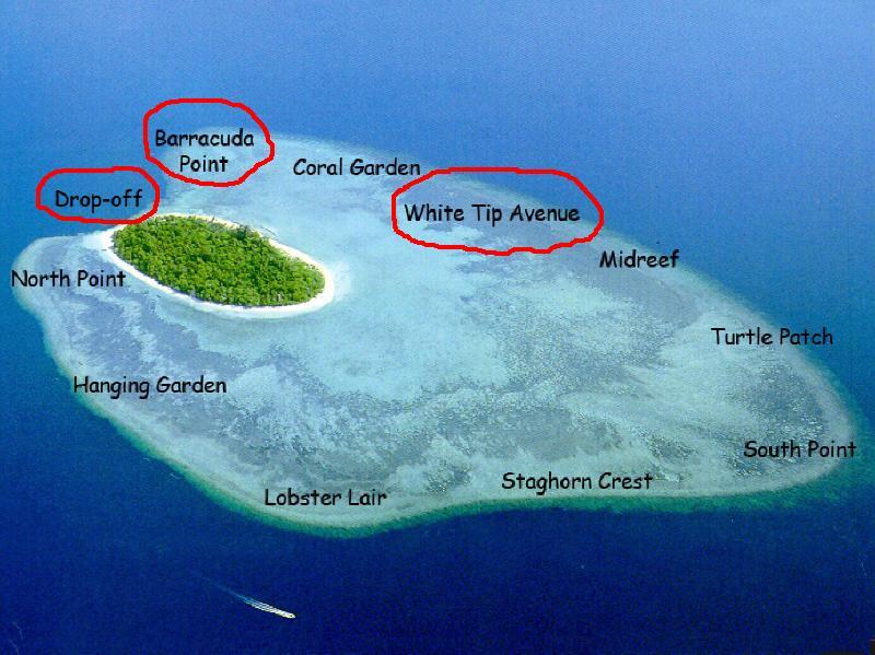 Backpackertur i asien sipadan en dykkers paradis - Sipadan dive sites ...