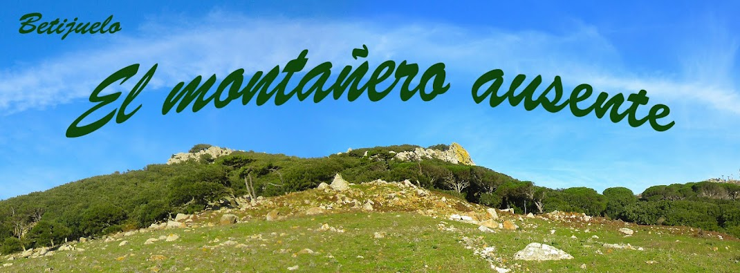 EL MONTAÑERO AUSENTE
