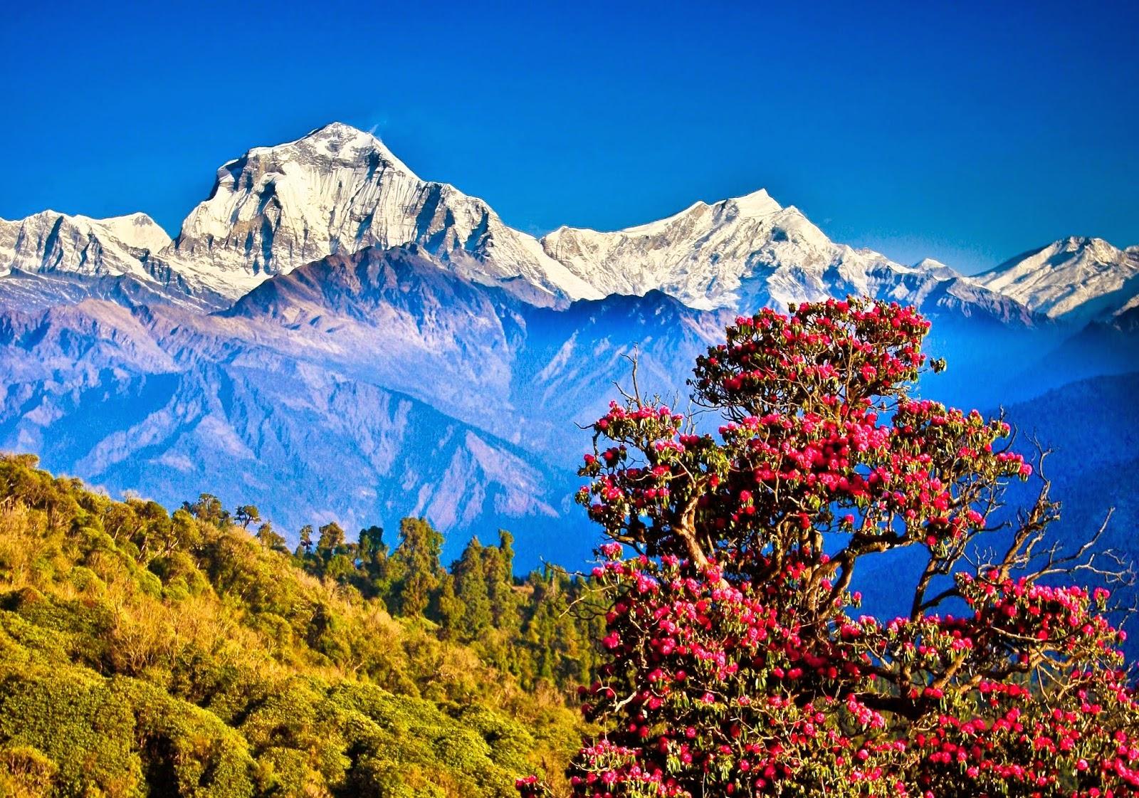 pokhara tour photos
