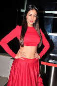Sonal Chauhan Sizzling at Size Zero Premier-thumbnail-12