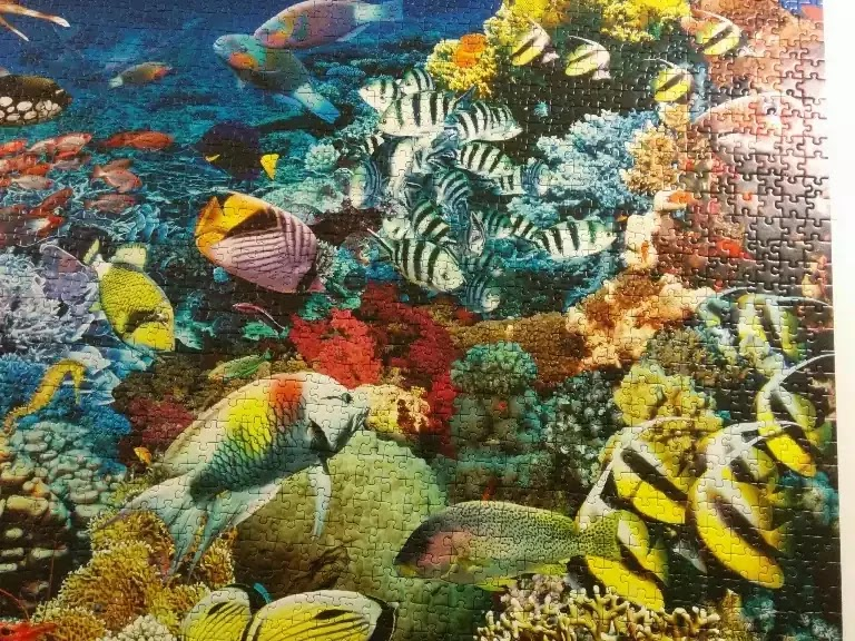 Ravensburger Under the Sea 5000 piece jigsaw puzzle close-up 7