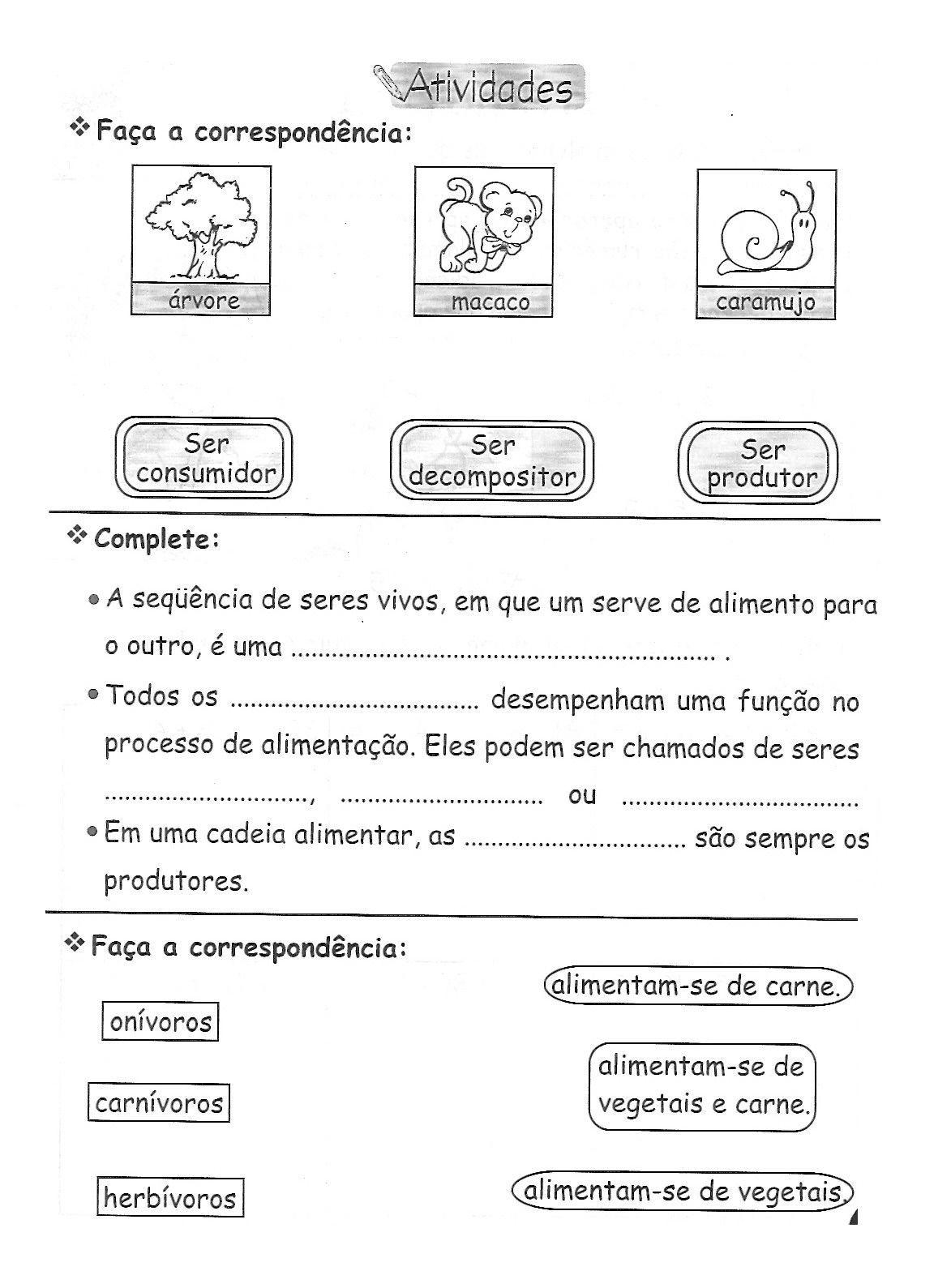 CADEIA ALIMENTAR ATIVIDADES EXERC  CIOS DESENHOS COLORIR IMPRIMIR  II