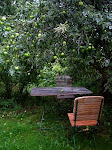 Puutarhan vihreä huone