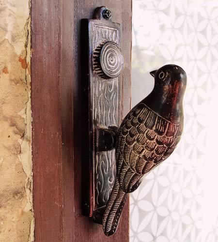 The Plural Of Hyena Unique Knockers And Unusual Knobs