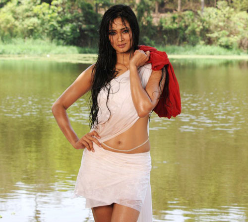 Shweta Tiwari Pictures, TV Star Actress Shweta Tiwari Photos