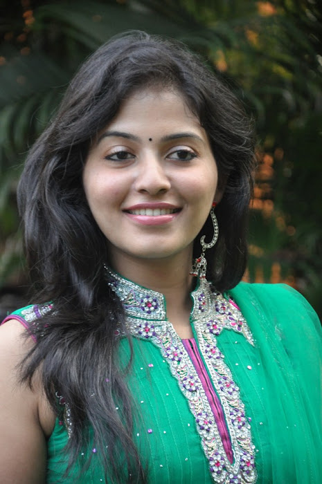anjali at aravaan press meet