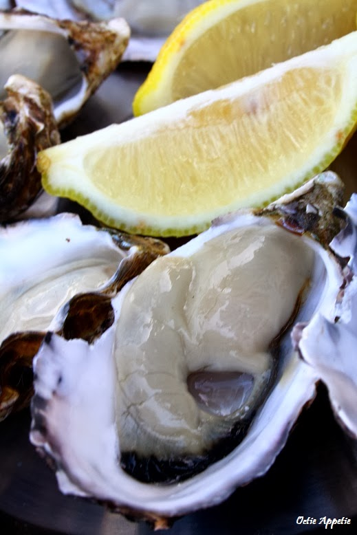 Tasmanian Pacific Oyster
