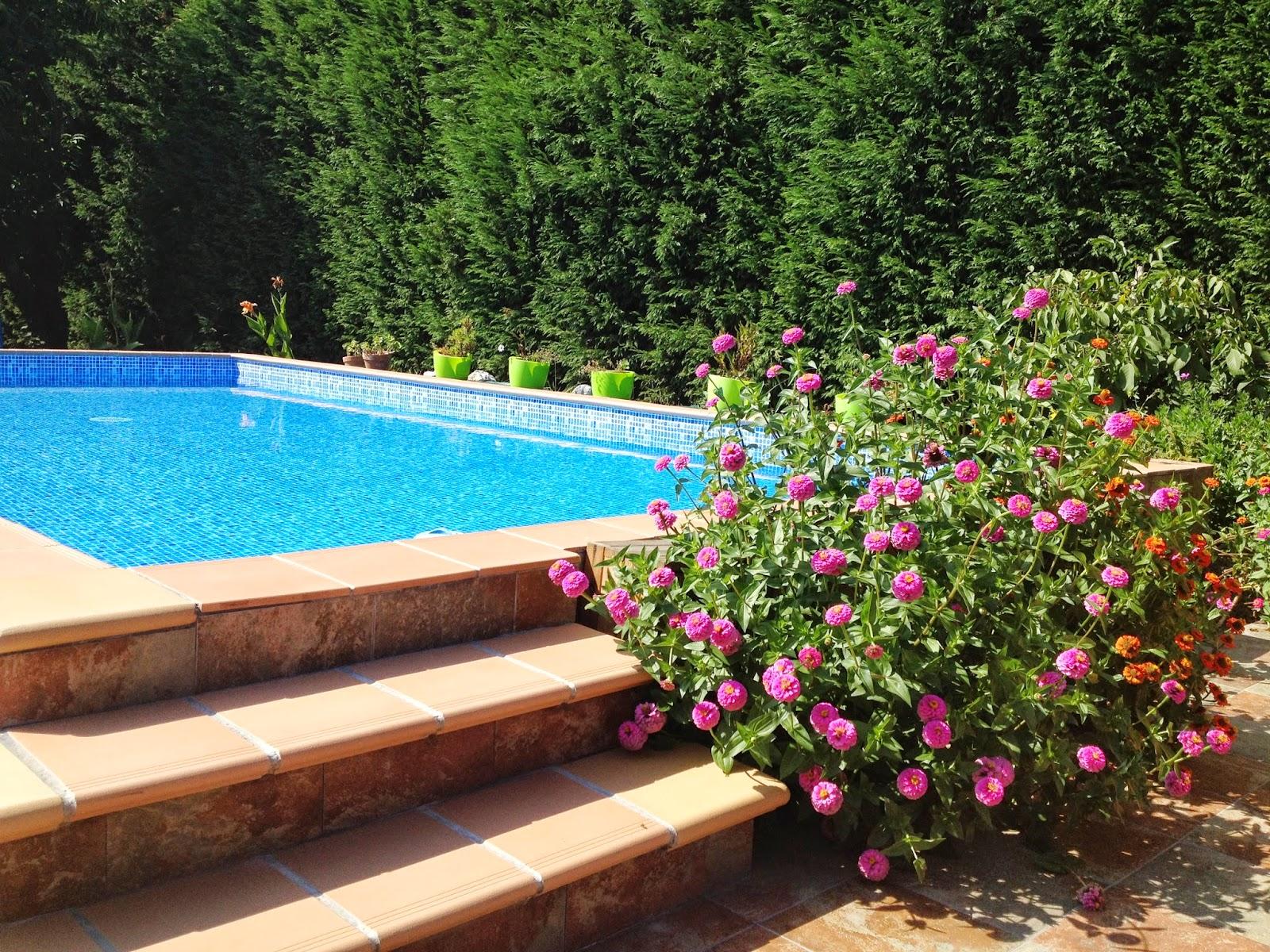 Casa tipo caba a en santillana del mar piscina nueva for Piscina nueva jarilla