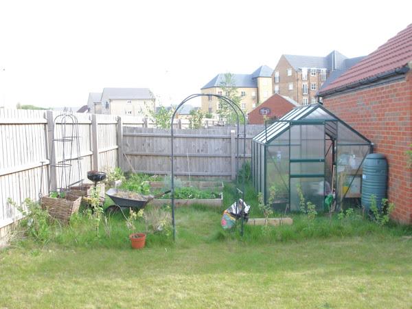 A garden transformed!