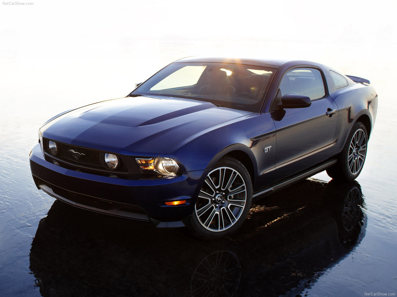 2010 ford mustang. Black Bedroom Furniture Sets. Home Design Ideas