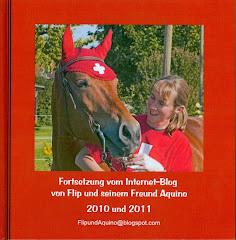 Blogbuch 2010/2011: