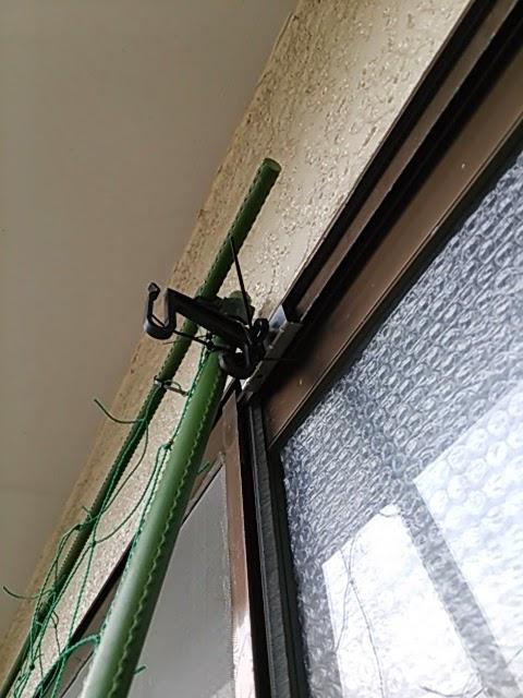 緑のカーテン ゴーヤ 支柱 組み立て ネット 固定