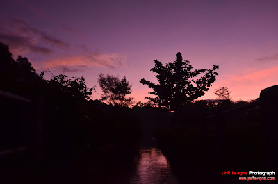 Purple Sky Sunrise