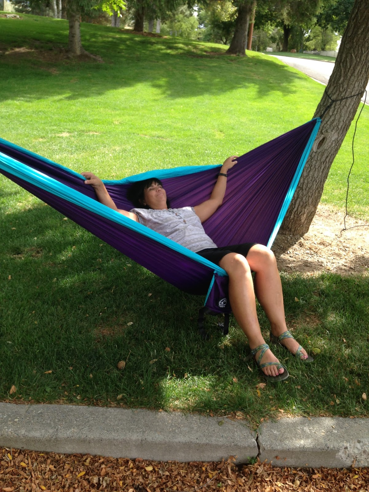 guides person and find arc including quotations blue hammock white cheap wood deluxe stand quilted shopping deals two get hammocks