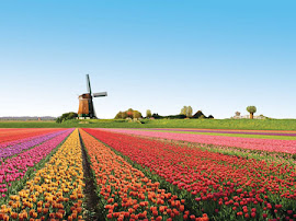 Keukenhof, el parque floral más grande del mundo