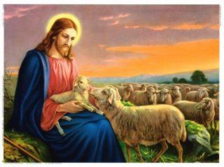 Risultati immagini per gesu e le pecore