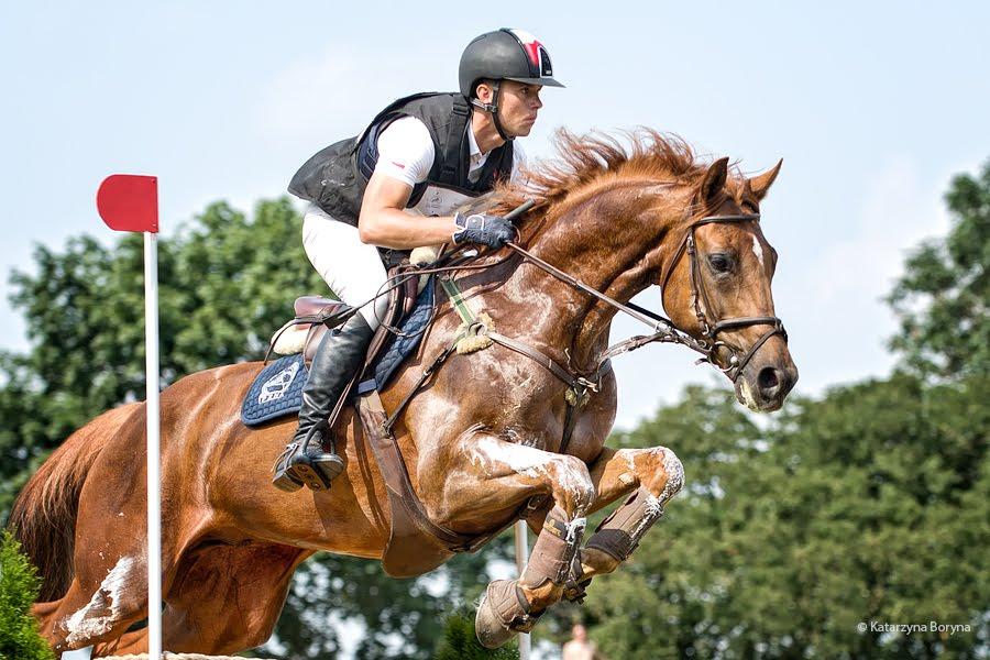 essay on horses by edwin muir