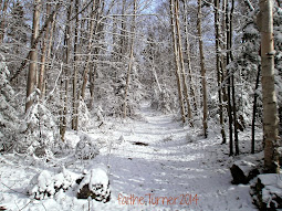 Around the Adirondacks!