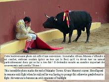 Cliquer sur l'image pour le blog corrida