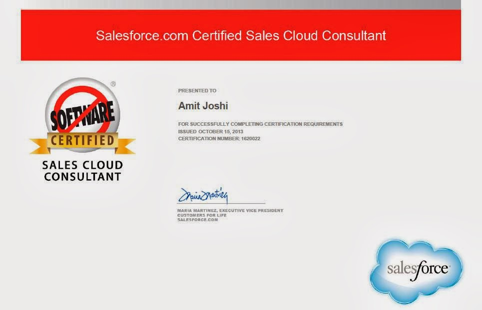 Amit Joshi Salesforce Certified Sales Cloud Consultant