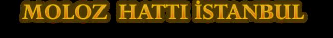 MOLOZ HATTI  / 0535 603 19 74