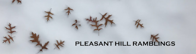 Pleasant Hill Ramblings