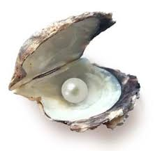 Madreperla sostanza calcarea pregiata usata in gioielleria per orecchini, collane ecc.