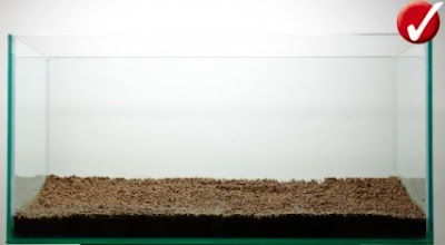 Substrate dalam aquascape
