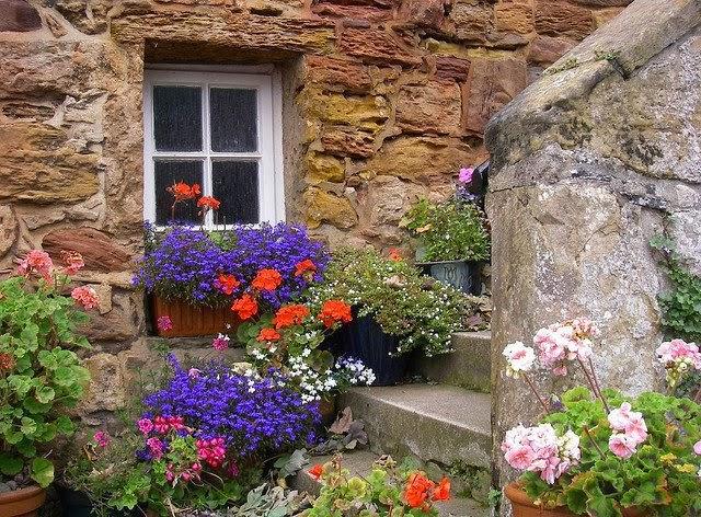 Как украсить фасад дома цветами своими руками 65