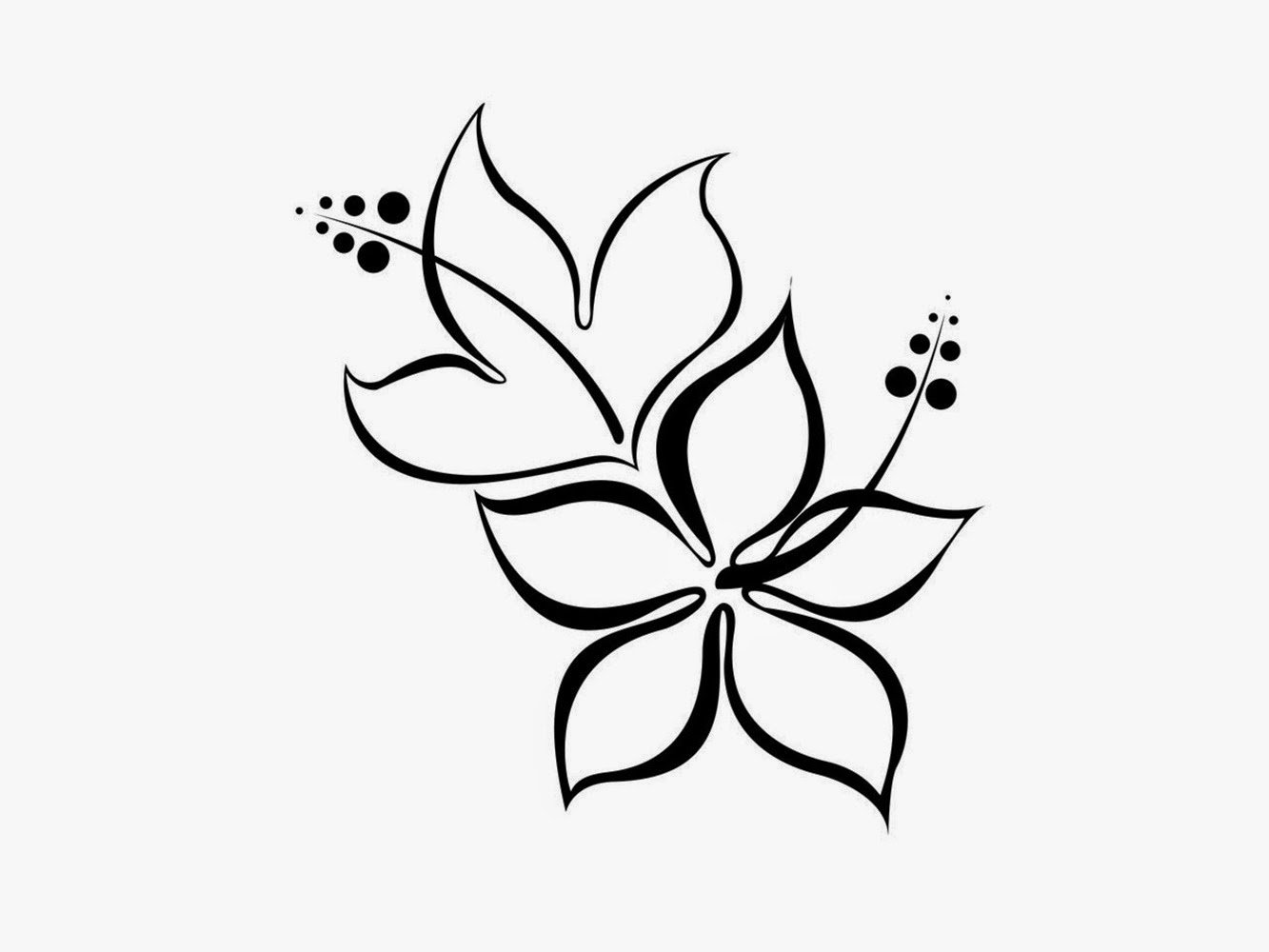 Black and white flower design many flowers black and white flower design flowers black and white mightylinksfo
