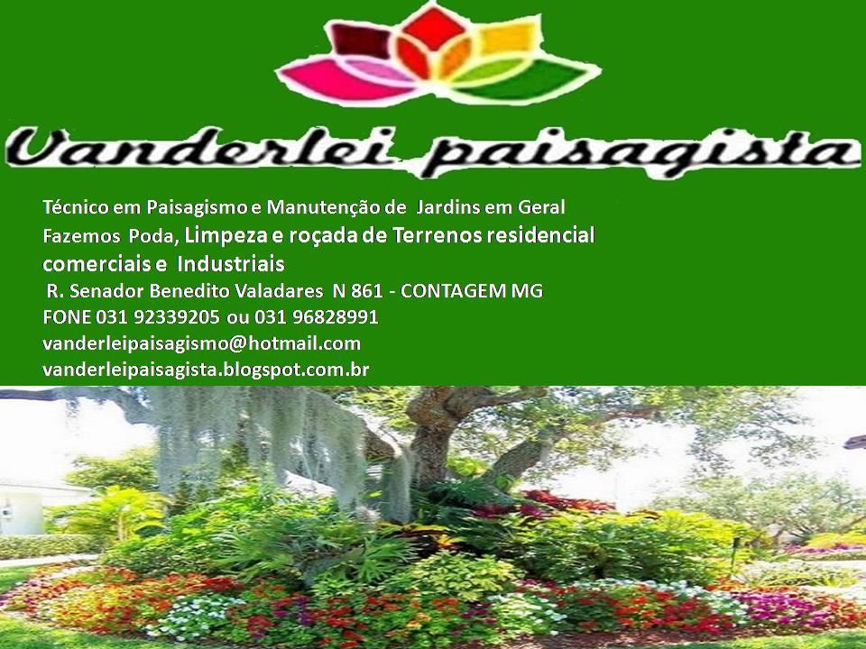 Vanderlei paisagista