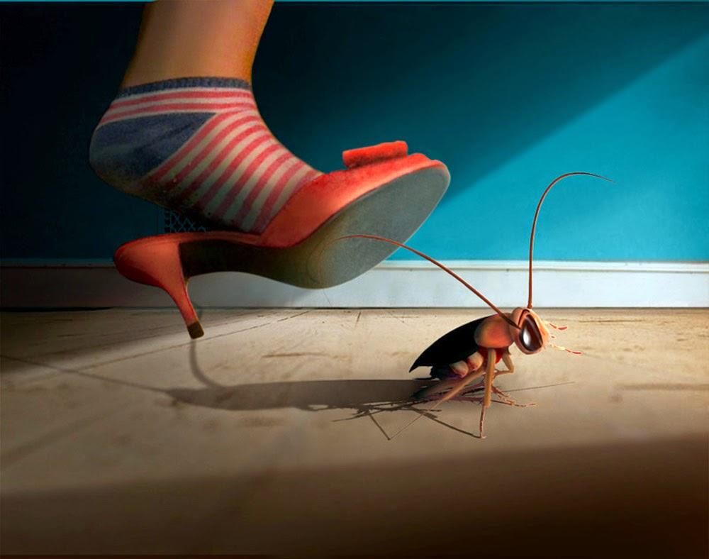 طرق طبيعية جد فعالة للتخلص من الصراصير بكل سهولة !
