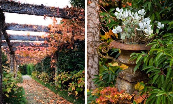 Original idea para jardines estilo rom ntico y for El jardin romantico