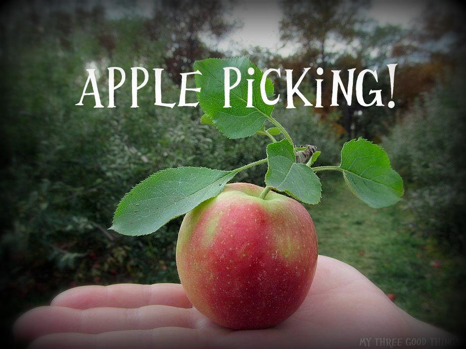 best moments date apple picking