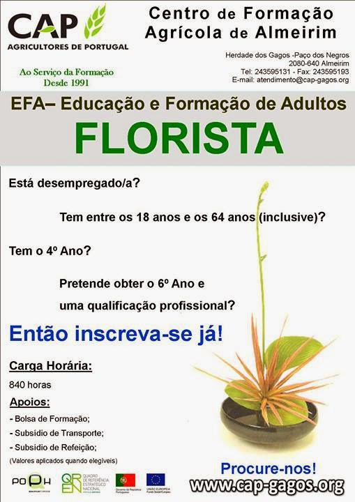 curso efa de florista